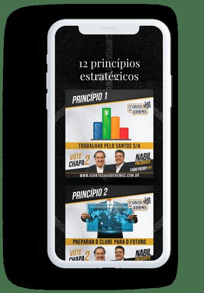 12 princípios estratégicos